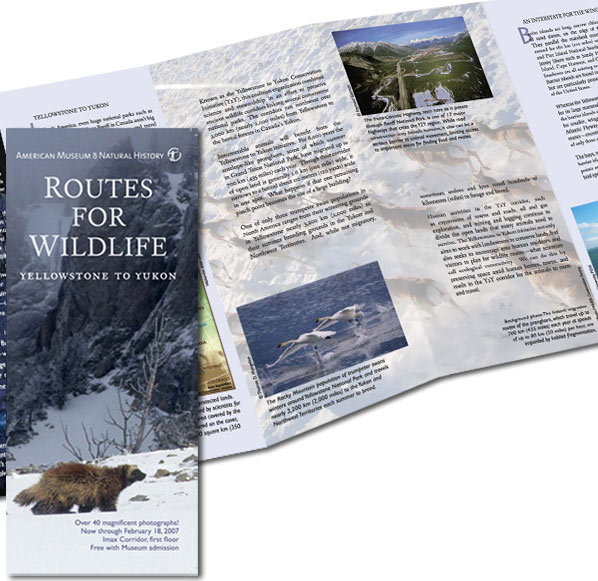 NPCA Routes for Wildlife Brochure